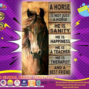 A horse is not just a horse he is sanity he is happiness poster