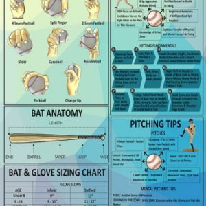 Baseball knowledge poster