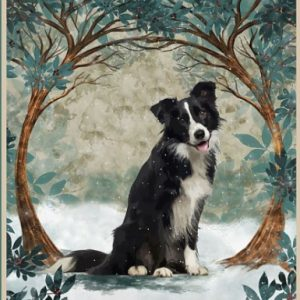 Dog Once upon a time there was a girl who really loves Border Collie poster