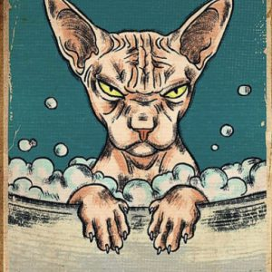 Sphynx cat get naked unless you are just visiting dont make it weird poster