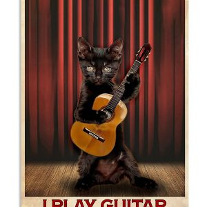 Black cat that's what I do I play guitar and i know things poster