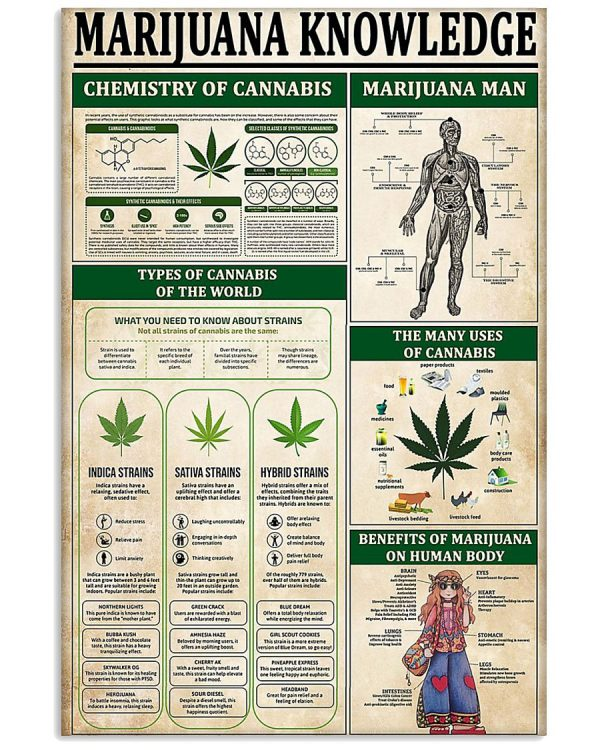 Marijuana knowledge poster