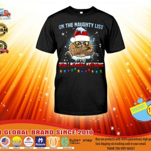 Owl One the naughty list and I regret nothing shirt, hoodie