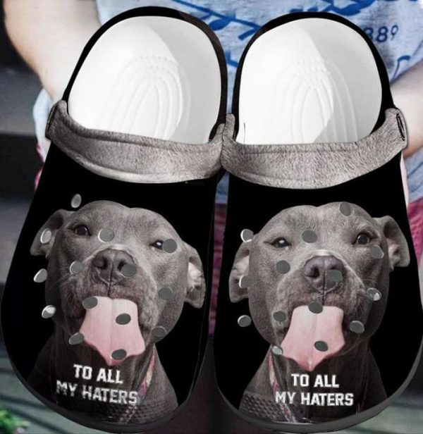 Pitbull To all my haters crocs shoes crocband
