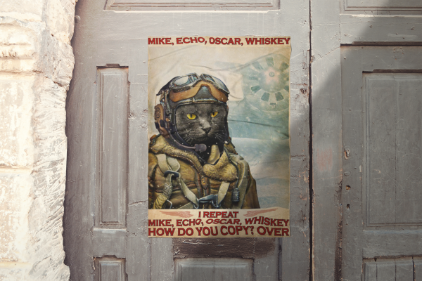 Cat I repeat mike echo oscar whiskey how do you copy over poster