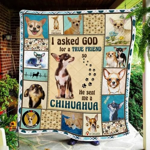 I ask God and he send me chihuahua bedding set2