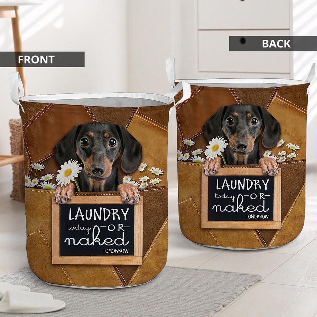 Dachshund Laundry today or naked tomorrow basket laundry2