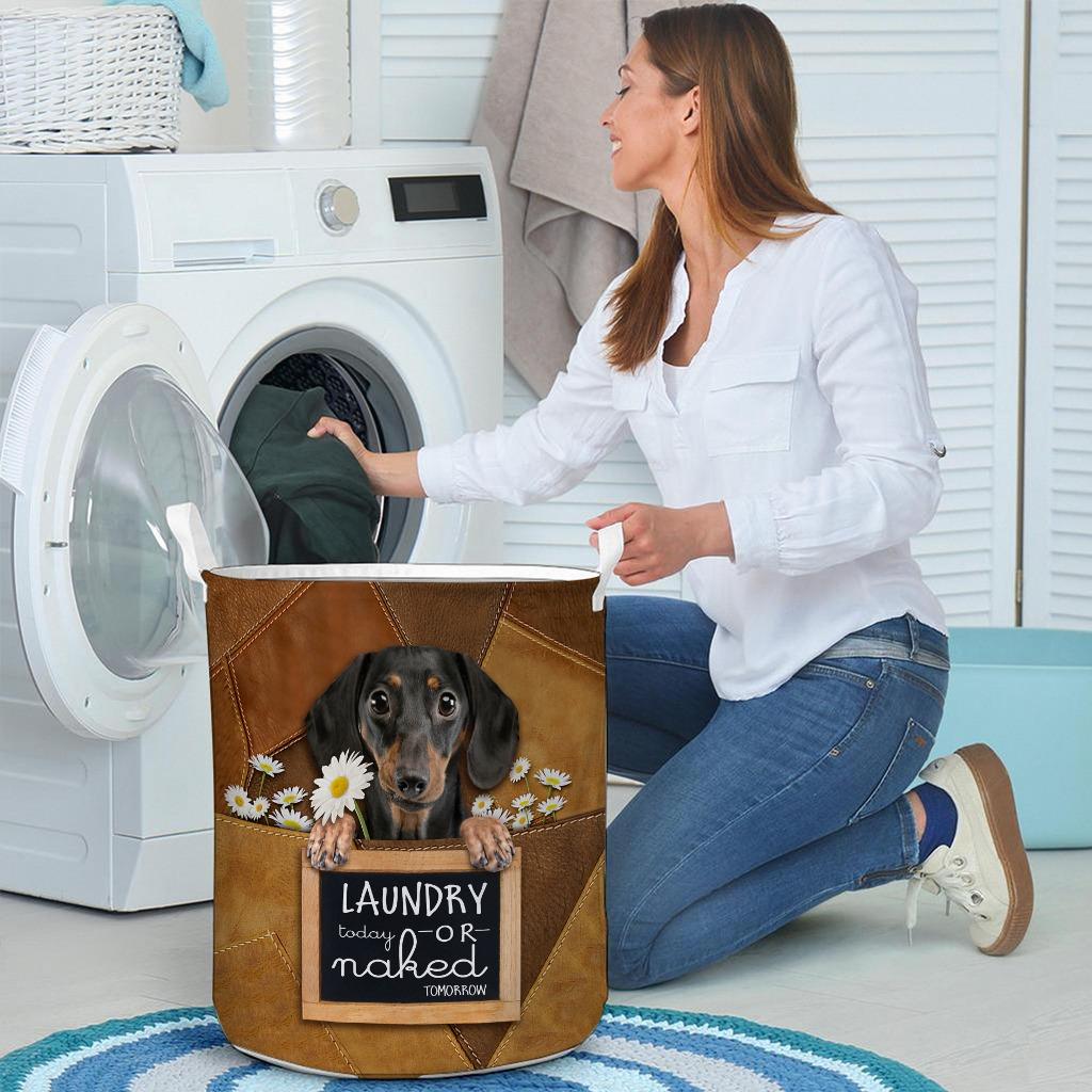 Dachshund Laundry today or naked tomorrow basket laundry4