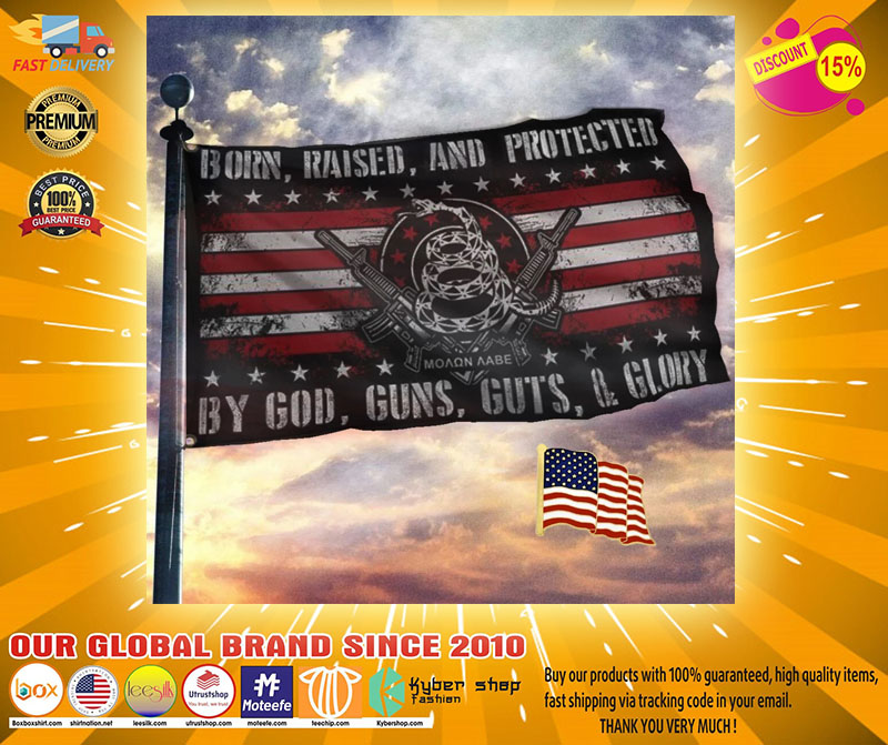 Born raised and protected by god guns guts and glory flag21