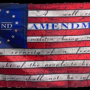 2nd Amendment A Well Regulated