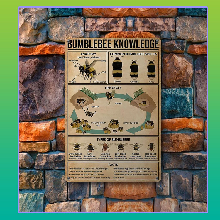 Bumblebee knowledge metal sign4