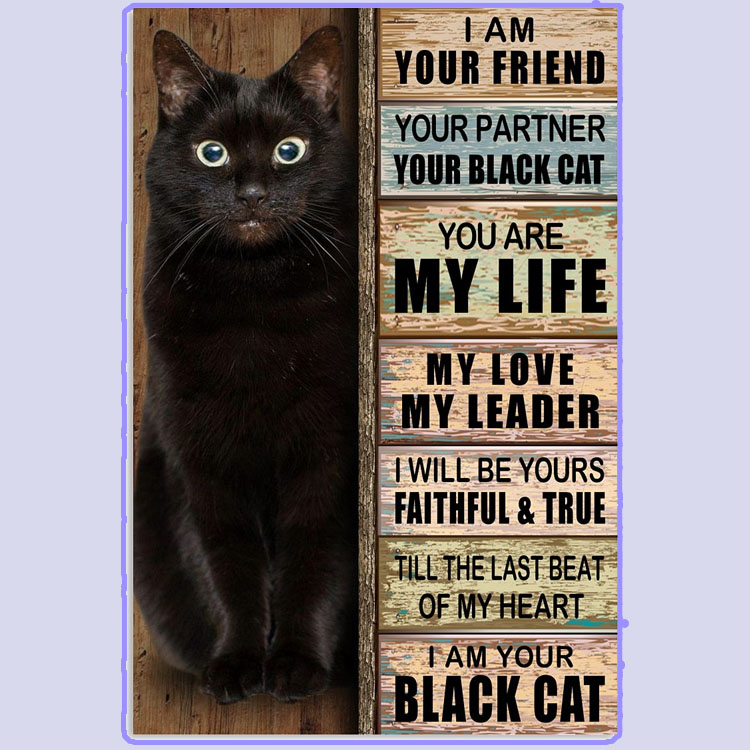 I am your friend your partner your black cat poster6