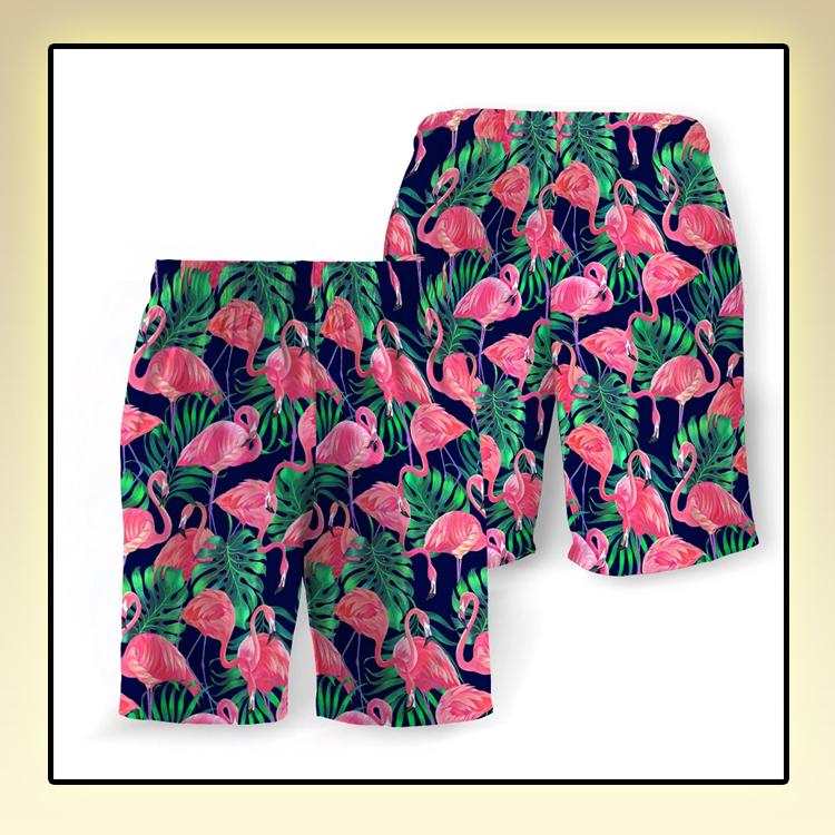 Tropical Flamingo Beach Short1