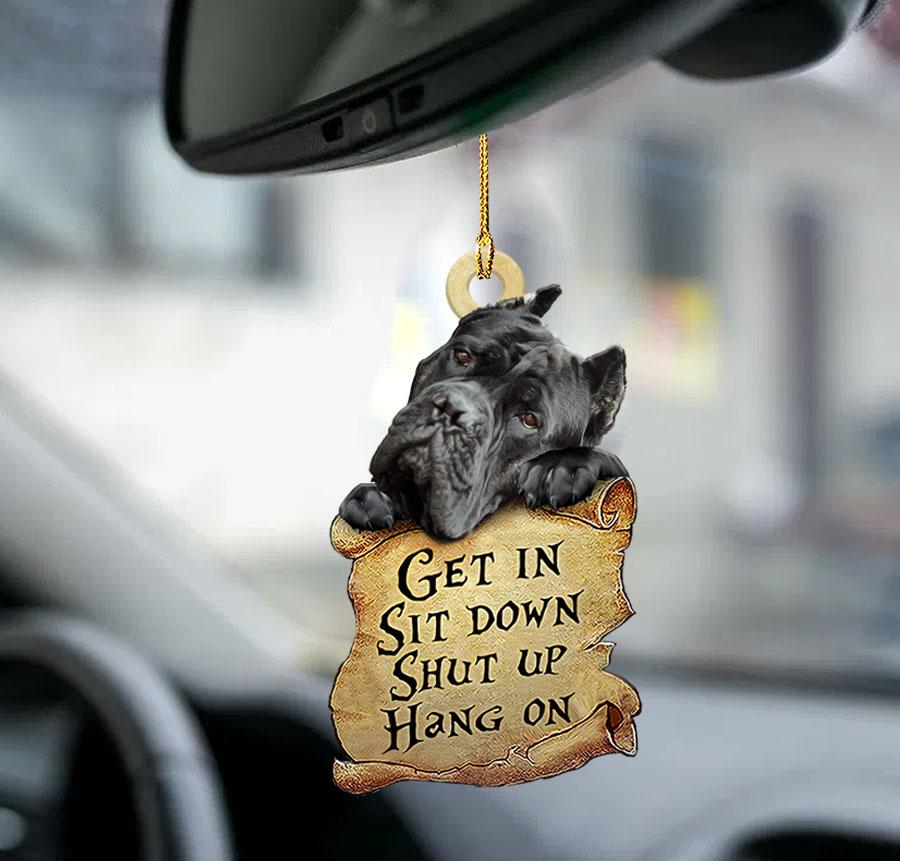 Cane Get In Sit Down Shut Up Hang On Ornament 1