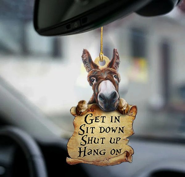Donkey get in sit down shut up hang out two sided ornament