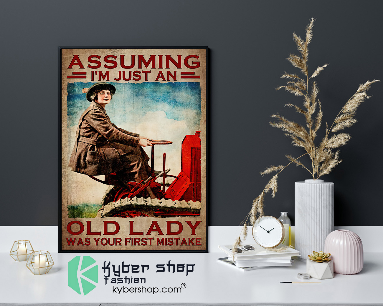 Assuming Im just an old lady was your first mistake poster 4