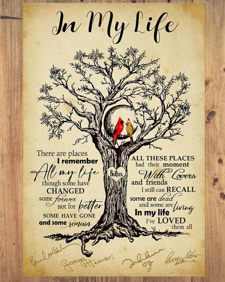 Cardinal Bird In My Life poster